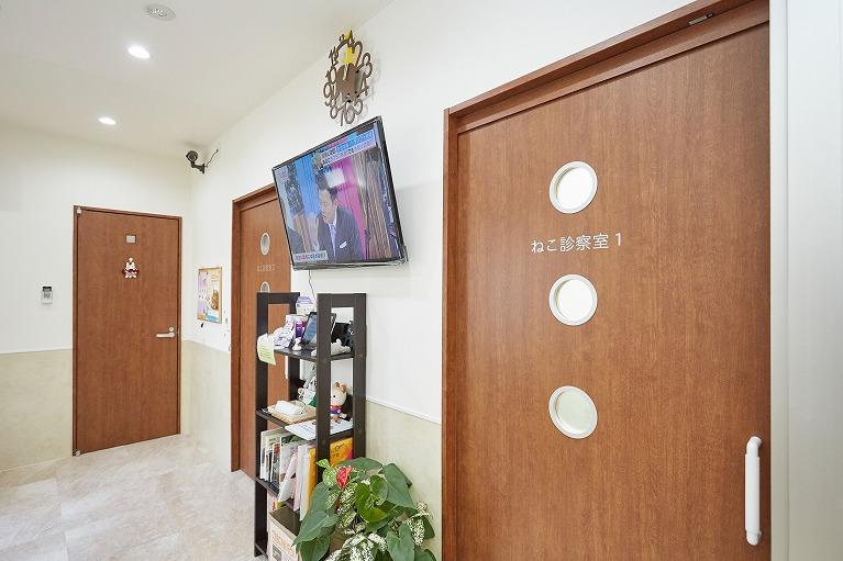 当院の待合室はワンちゃん・ネコちゃん別室です